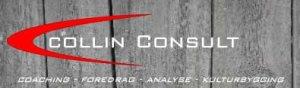 Logo Collin Consult